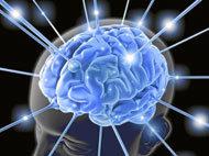 activa tu cerebro