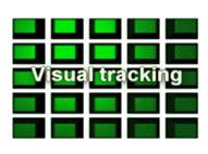 Seguimiento Visual Capacidad De Controlar Los Movimientos De Los